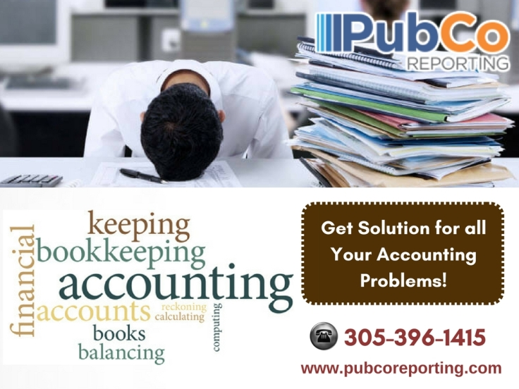 Professional Accountancy Services in Florida.jpg